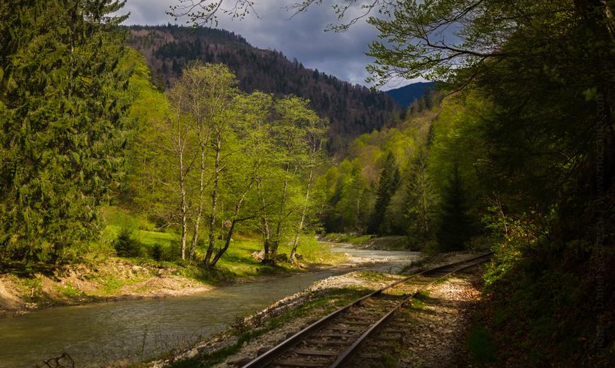 mocanita narrow gauge line CFF Viseu de Sus photo Daniel Secarescu