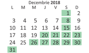 program-mocanita-CFFViseu-decembrie-2018
